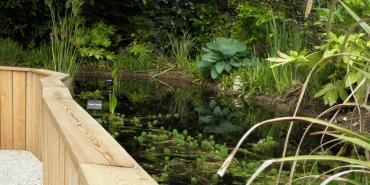 Le bassin en faucille